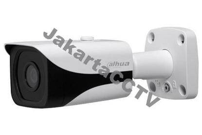 Gambar Dahua IPC-HFW8301E